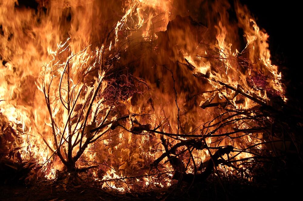 Bonfire in Lewiston by BobbyF