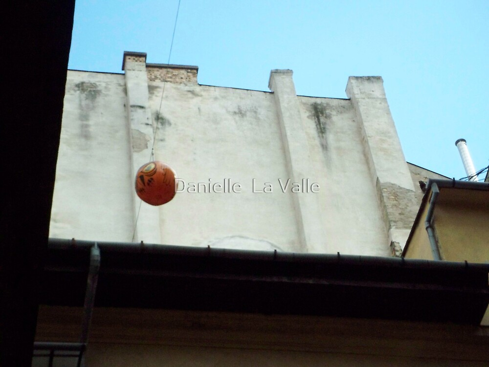 Owl Balloon 3 by Danielle  La Valle