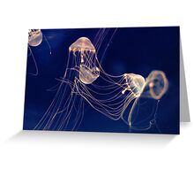 Silent dancers Greeting Card