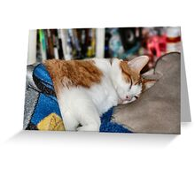 Sleepy Boy Greeting Card