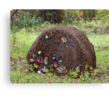 A fancy bale of hay Canvas Print