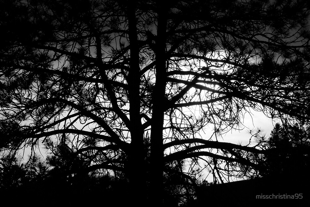 Dark Trees by misschristina95