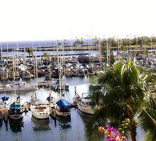 Paradise Marina by Kirsten Harding