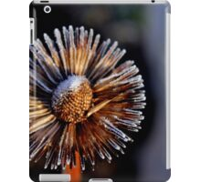Frost V iPad Case/Skin