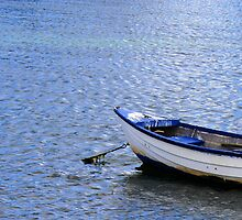 Blue Boat by Stephen Mitchell