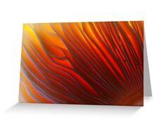 Eye of the Fire Storm Greeting Card