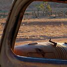 Station Wreck,Old Andado, Simpson Desert by Joe Mortelliti