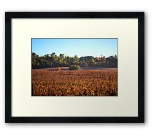 Canadian Autumn Country Fields Framed Print