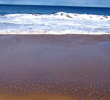 Boomer Beach by Princessbren2006