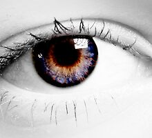 Eye Gazing by Harley