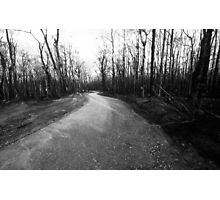 there's a track....Gippsland bushfires 2007, Vic Photographic Print