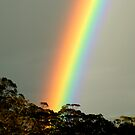 Rainbow by John Barratt