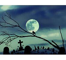 sweet darkness Photographic Print