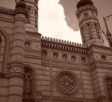 The Great Synagogue in Dohany Street by Danielle  La Valle