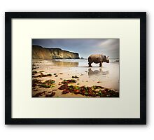 Beach Rhino Framed Print