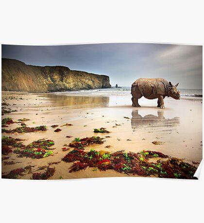 Beach Rhino Poster
