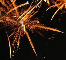 Firework by davidbenjamin333