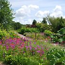 National Botanic Garden of Wales  - South Wales by 29Breizh33
