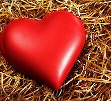 Fragile Heart by ccaetano