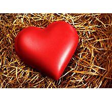 Fragile Heart Photographic Print