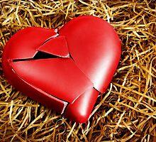 Broken Heart by ccaetano