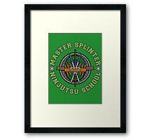 Master Splinter's Ninjutsu School Framed Print