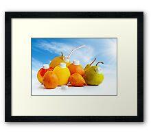 Juicy Fruits Framed Print