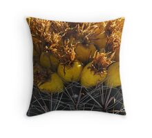 Barrel Cactus Fruit Throw Pillow