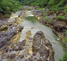Barron Gorge Qld by kies
