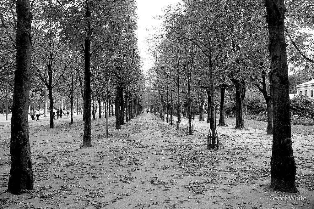 Paris street by Geoff White