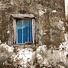 Blue window by Sharon Bishop