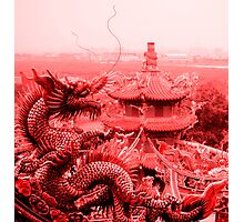 Dragon in Red Photographic Print