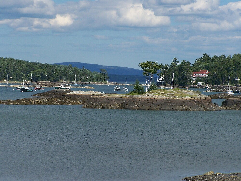 Blu Hill Harbor by yukonjack