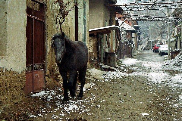 Gypsy Life by Katia