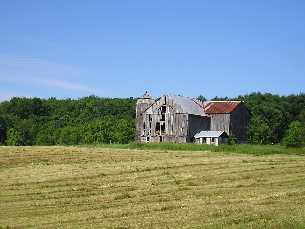 Barn in field by IndyLady