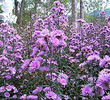 Flower by liembest