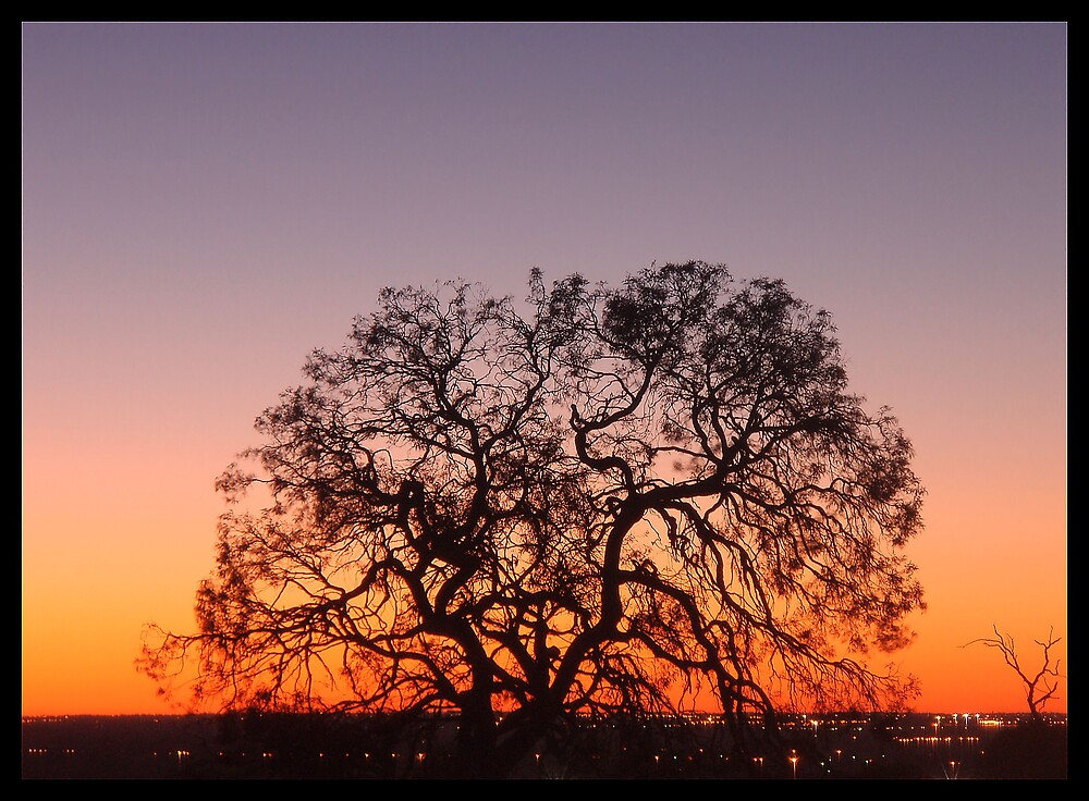 Silhouette Sunset (landscapephotocomp) by Dallas