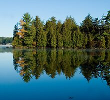 Lake with Trees by Mary  Lane