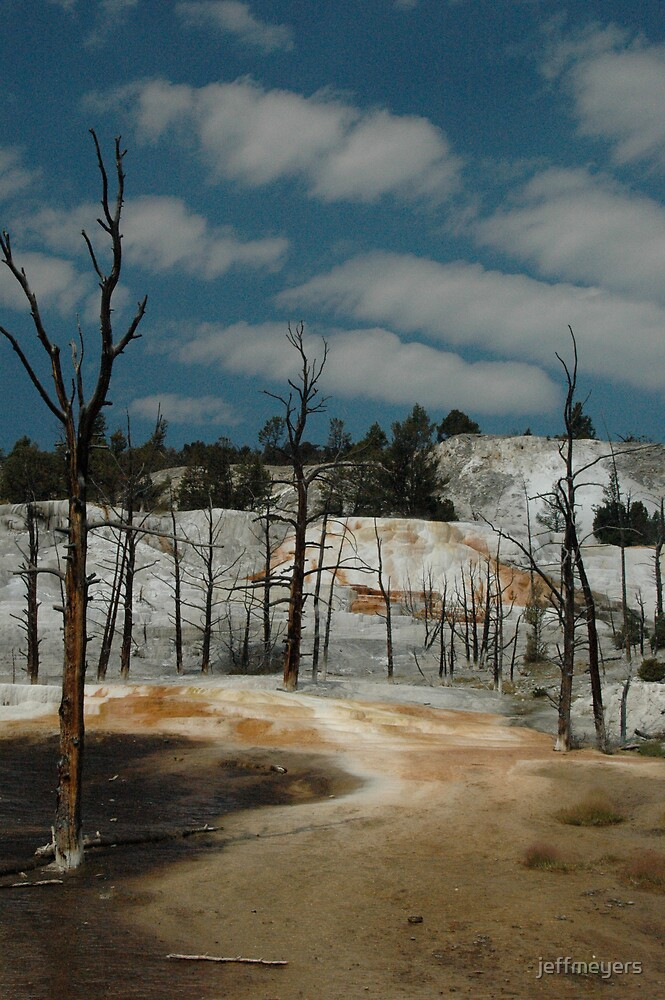 Yellowstone Scene 1 by jeffmeyers