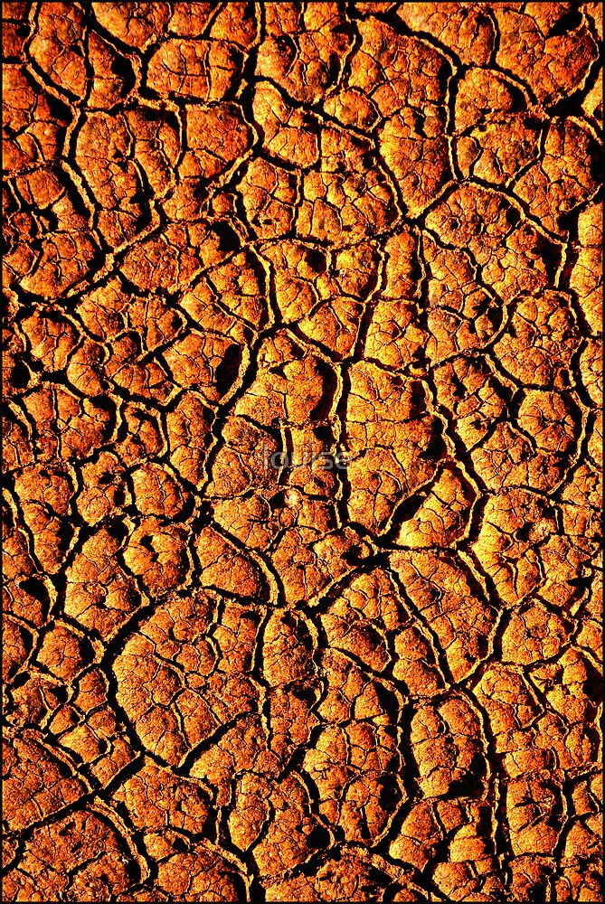 SCORCHED EARTH by louise