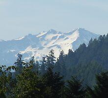 Diamond Peak in the early springtime by Rosemarie