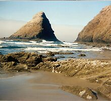 Pacific Coast by Rosemarie
