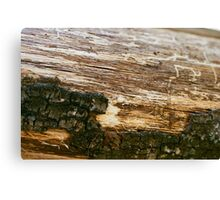 Log Canvas Print