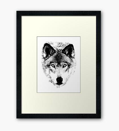 Wolf Face. Digital Wildlife Image. Framed Print