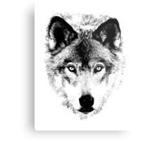 Wolf Face. Digital Wildlife Image. Metal Print