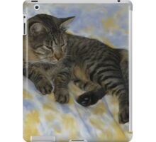 My Friends Maine Coon Cat iPad Case/Skin