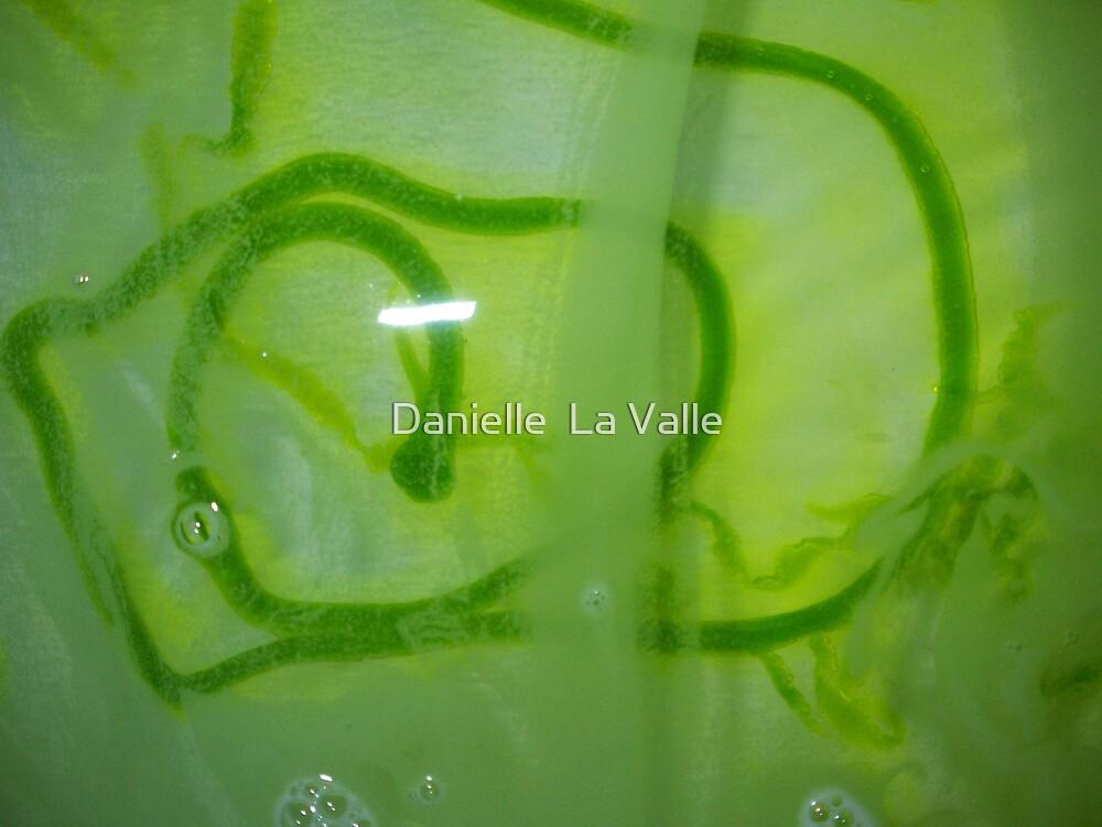 green by Danielle  La Valle