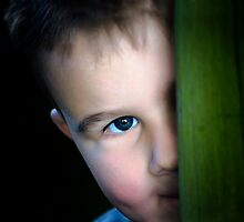 Peek-a-boo by Sue Wilson (Kane)