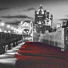 Tower Bridge and the Ceramic Poppies BW by Colin J Williams Photography