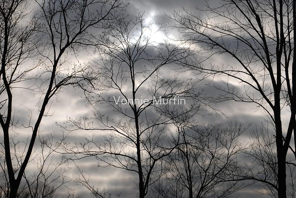 Dark Clouds  by Vonnie Murfin